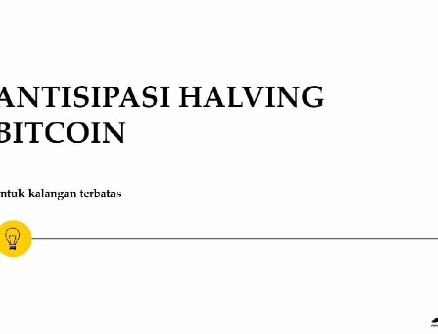 harga bitcoin setelah halving